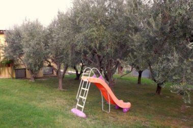 Il giardino degli ulivi appignano macerata area events for Il giardino degli ulivi monteviale