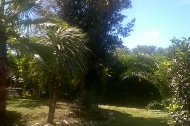 Villa Altea