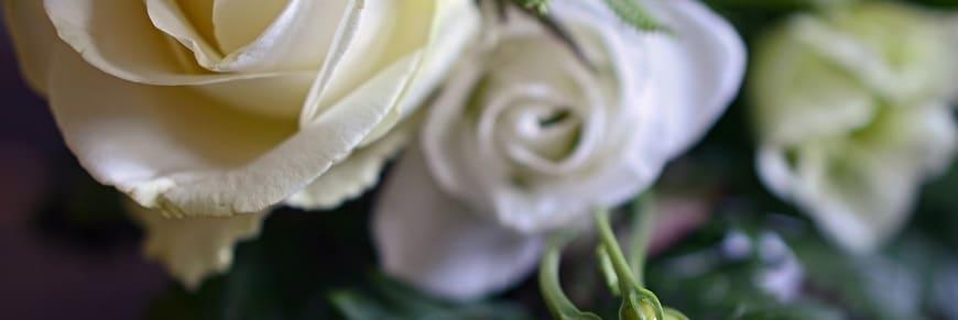 fiori per nozze di diamante
